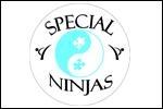 special_ninja